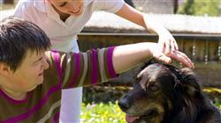 posgrado programas intervencion asistida animales