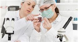 formacion técnicas analíticas de  aplicación en el control  de calidad en la  industria alimentaria