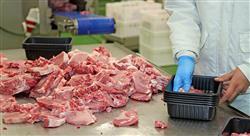 especializacion online gestión y validación de procesos en el sector alimentario
