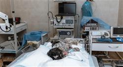 posgrado anestesia y cirugía de pequeños animales