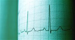 especializacion online técnicas diagnósticas en cardiología en especies mayores