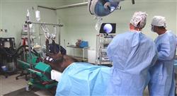 maestria online anestesiología veterinaria en especies mayores