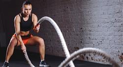 estudiar alto rendimiento deportivo: estadística nutrición y entrenamiento de movilidad