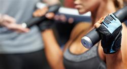 especializacion online alto rendimiento deportivo: entrenamiento de fuerza velocidad y resistencia