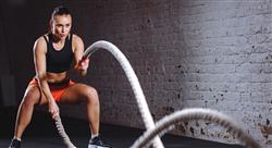 experto universitario alto rendimiento deportivo: entrenamiento de fuerza velocidad y resistencia