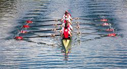 especializacion online nutrición en la actividad física y deporte acuático