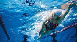 estudiar nutrición en la actividad física y deporte acuático