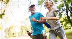 curso nutrición en poblaciones específicas en la actividad física y en el deporte