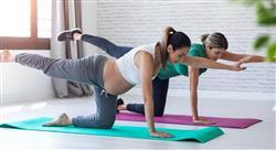 formacion ejercicio físico y embarazo