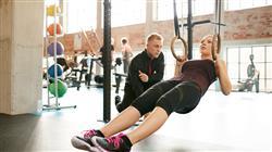 especializacion online entrenamiento movilidad fuerza dirigido monitor gimnasio