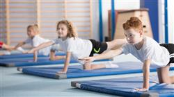 diplomado monitor gimnasio ejercicio fisico etapa infantojuvenil adulto mayor