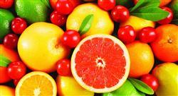formacion principios activos de las plantas formas farmacéuticas y preparados galénicos