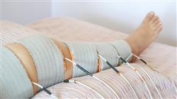 curso electroestimulacion fortalecimiento muscular actividad fisica deporte