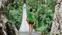 master direccion empresas turismo sostenible Tech Universidad