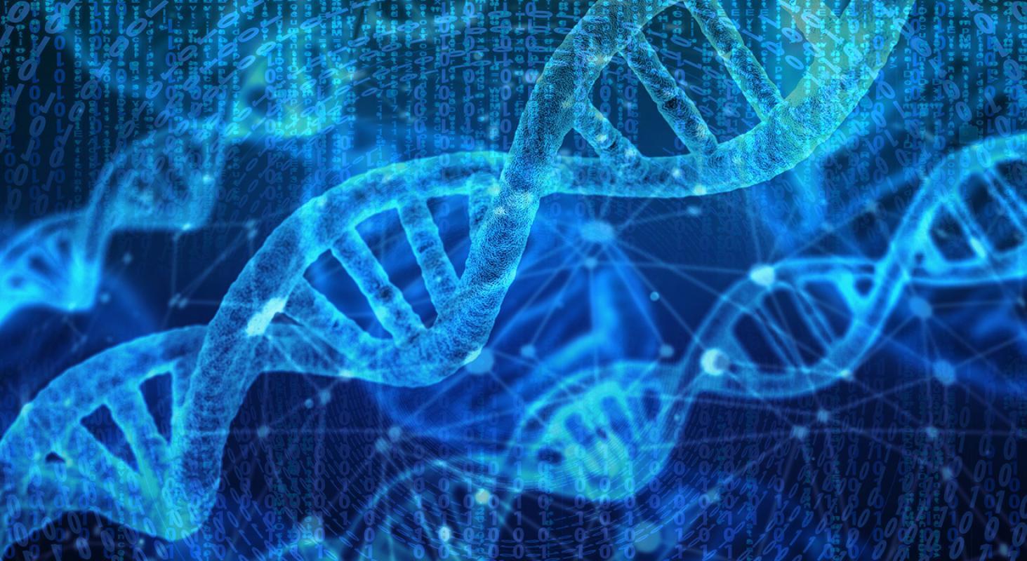 Bioinformática Aplicada a Tromboembolismo Venoso